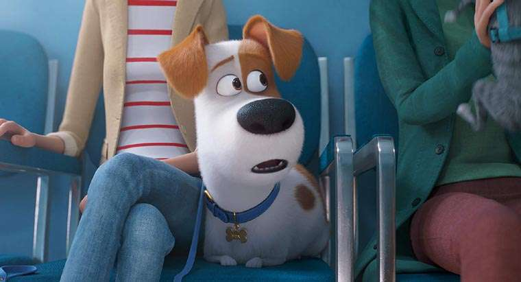 The Secret Life of Pets 2, trailer